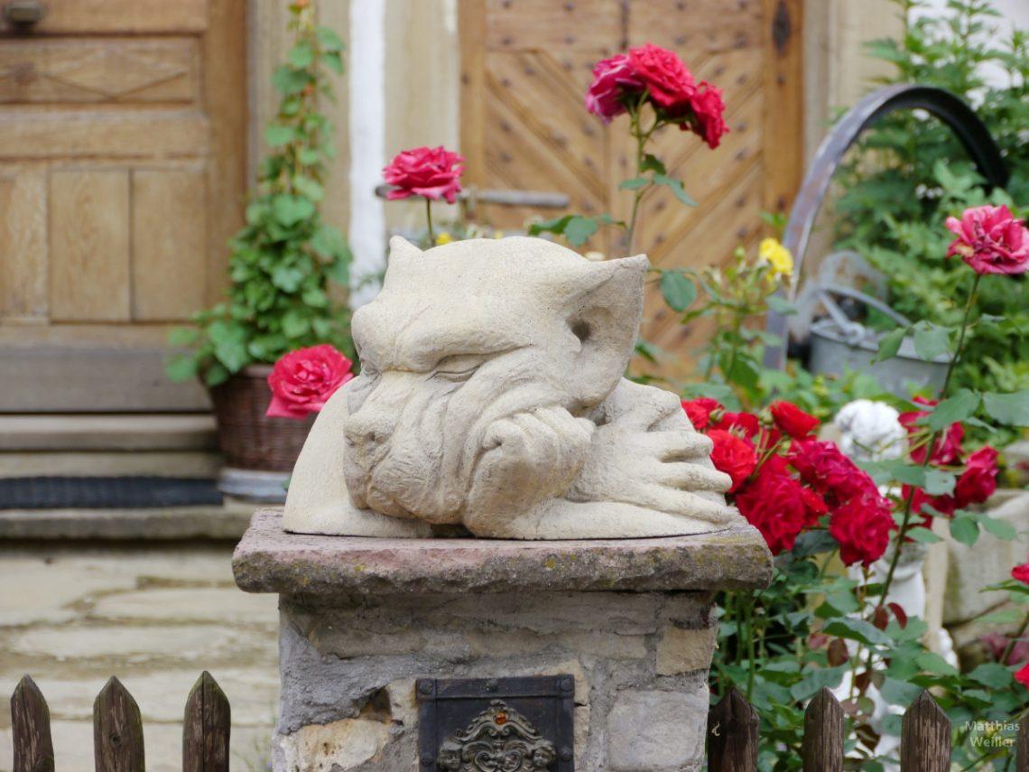 Denkender Hundekopf mit Rosen im Hintergrund