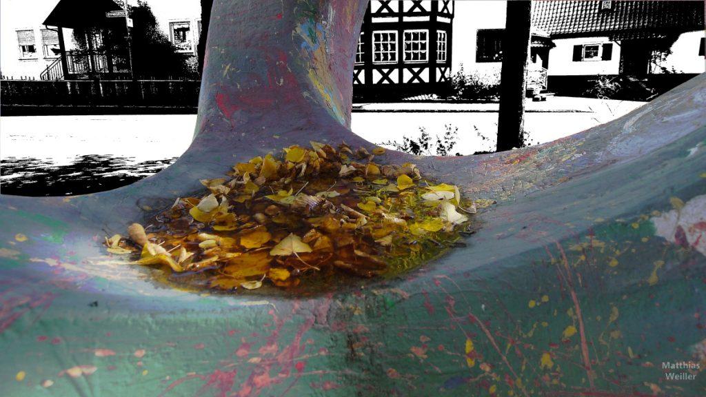 Herbstlaub gewässert in Mulde einer Steinskulptur