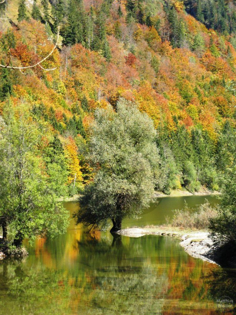´bunter Herbst am Weitsee, Deutsche Alpenstraße