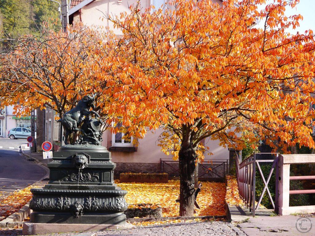Kastanie mit rotem Herbstlaub und Brunenn mit Zeigenbock und Löwe, Vogesen