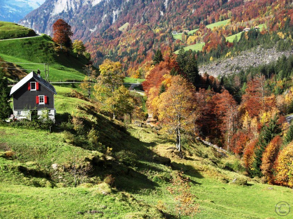 Herbstimmung am Klausenpass, untere Westseite