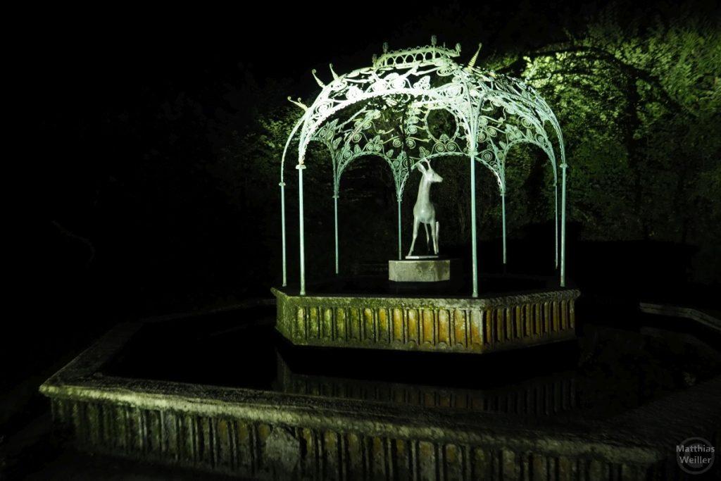 Rehbrunnen bei Nacht