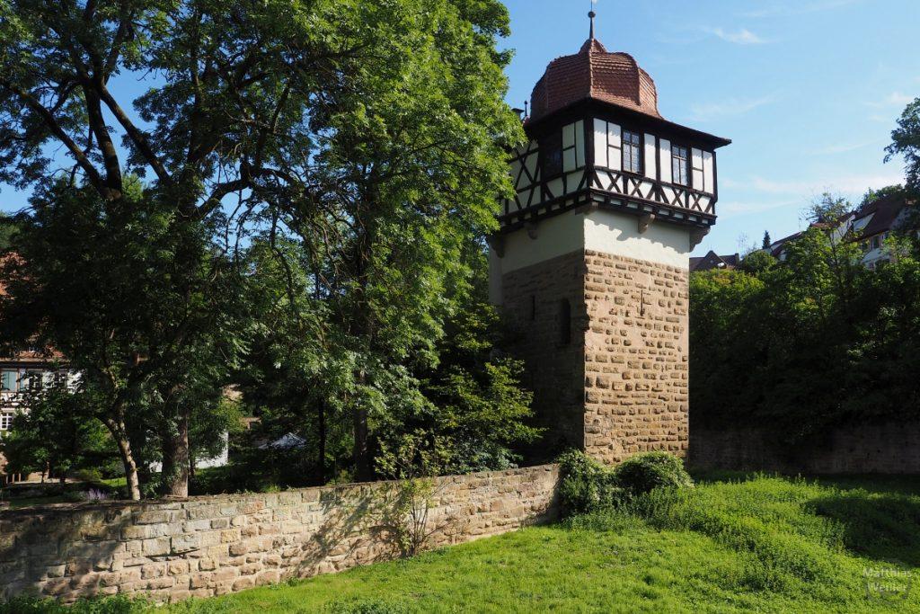 Turm und Mauer am Kloster Maulbronn