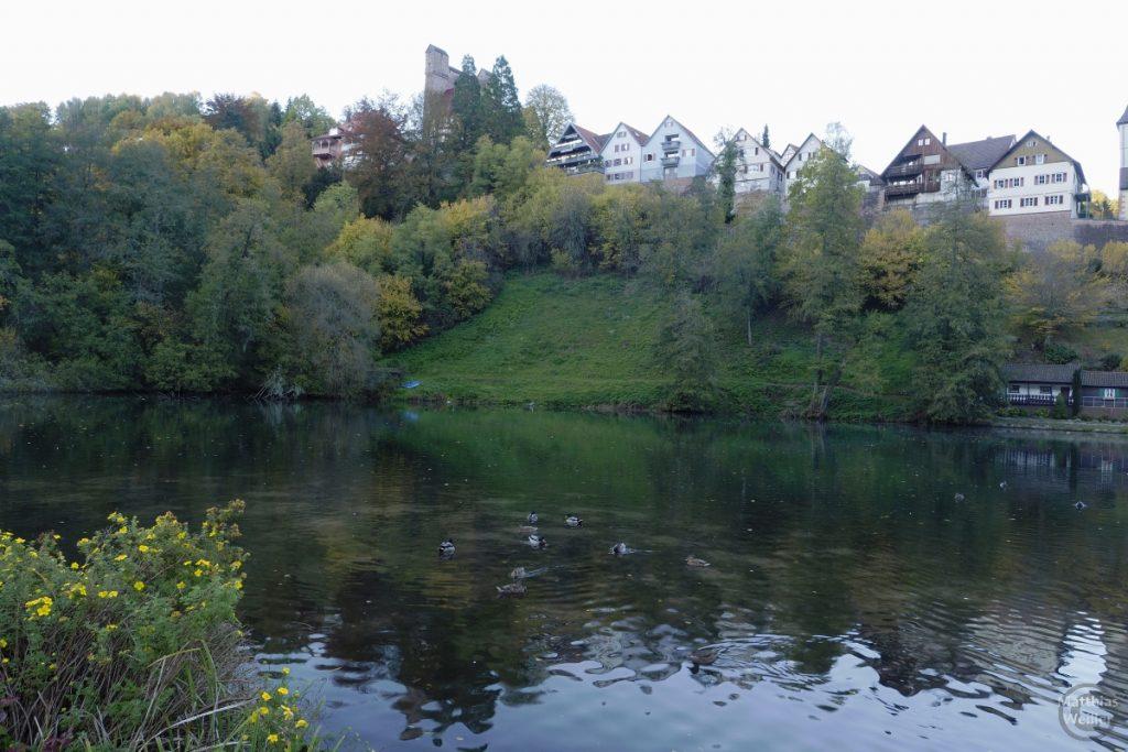 Berneck mit Ententeich und Burg oberhalb