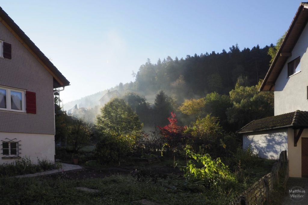 Morgennebel mit Herbststimmung in Enzklösterle
