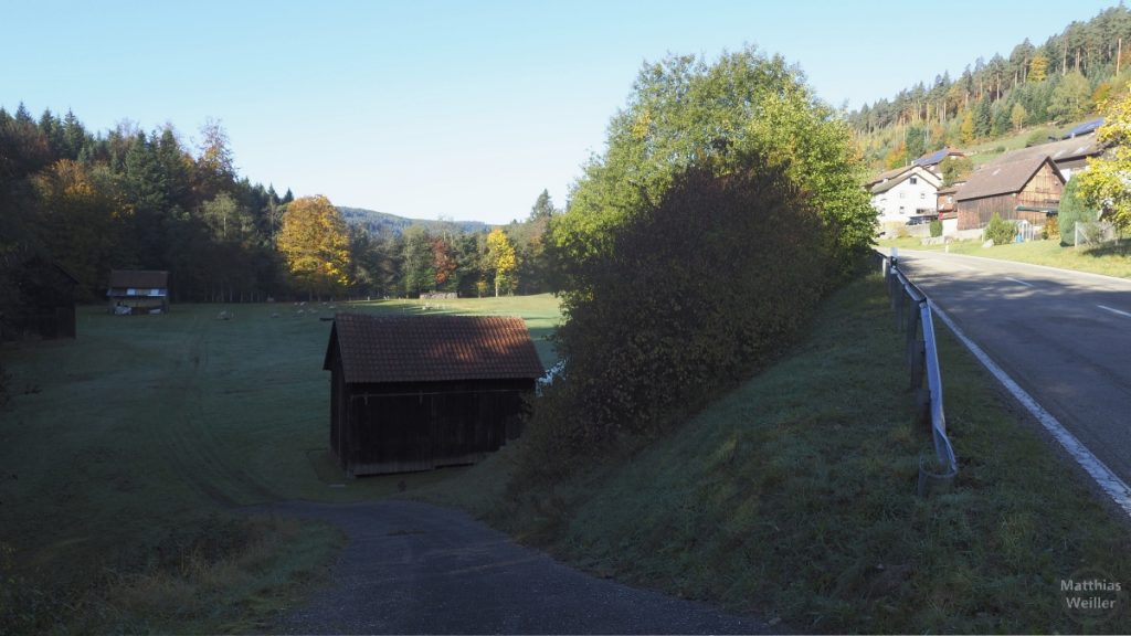 Sprollenhaus mit Schafsweide