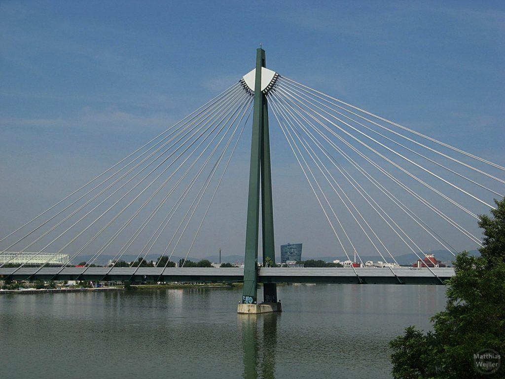 Seilspannbrücke in Wien