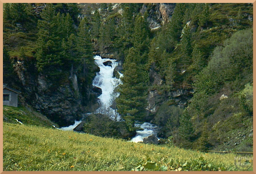 breiter Wasserfall am Flüelapass im frischen Sommergrün