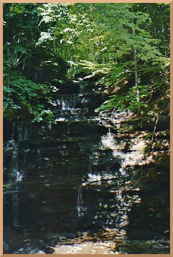 Buchenurwald mit schiefrigem Wasserfall am Passo Fangacci