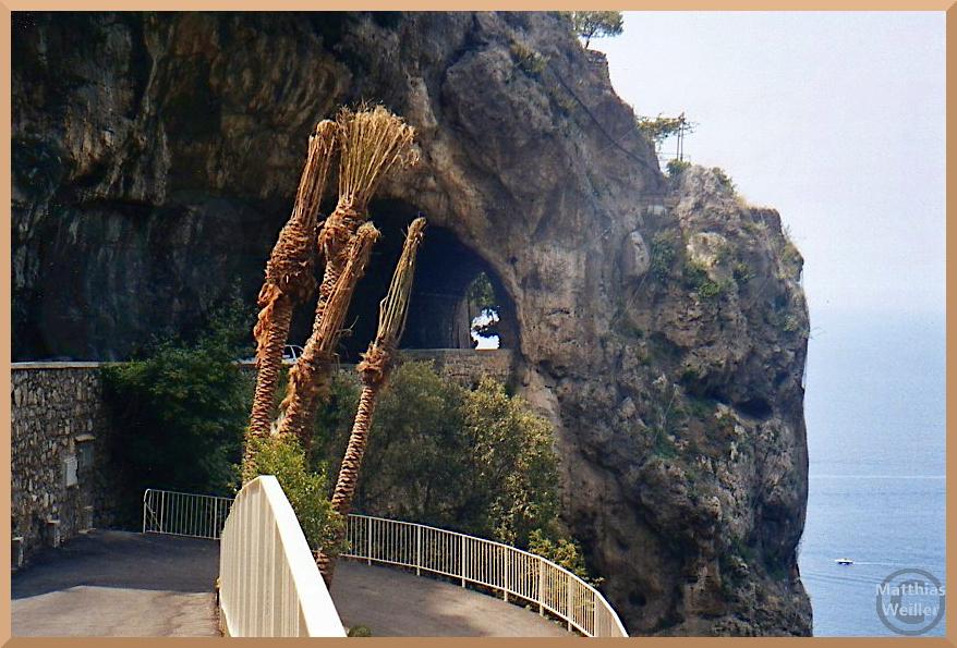 Felstunnelmit Palmstämmen im Vordergrund über Meer, Amalfiküste