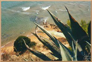 Blick auf ockerfarbenen Strand durch Agave mit Badenden, Capo Rizzuto