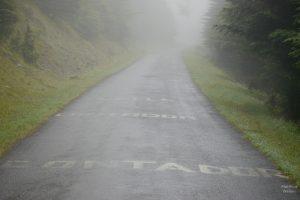 Nebelstraße mit Aufschriften von Radhelden