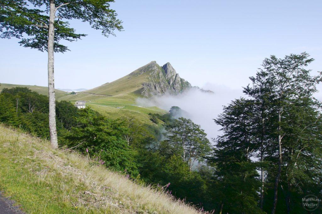 Berg aus Nebel heraus, Iraty