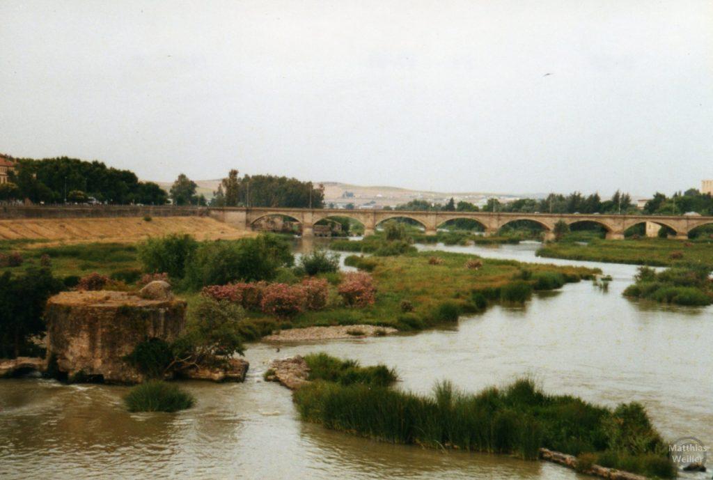 Mehrsteinbogenbrücke in Cordoba