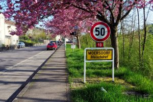 rosa Mandelblüte Einfahrt mit Ortsschild Moersdorf