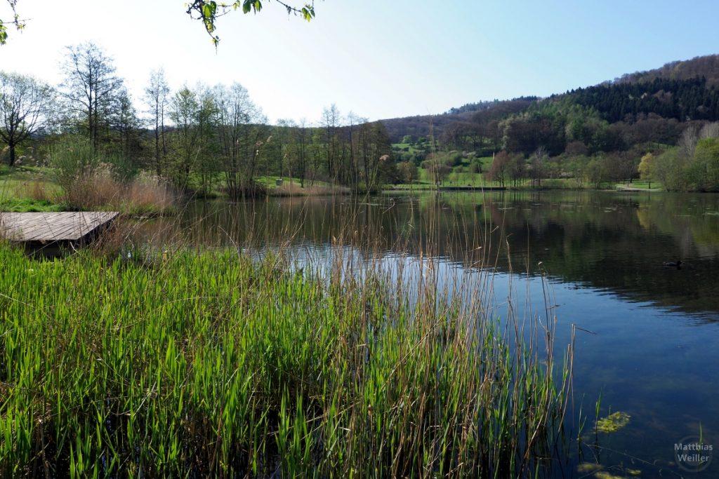 Schlifgras und Holzsteg am Freizeitsee Echternach
