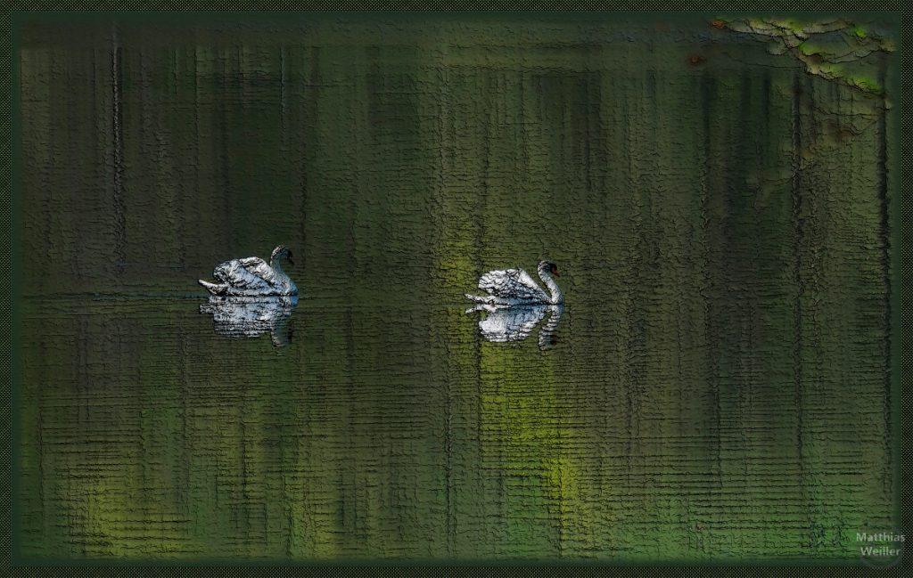 stilisiertes Foto (Relief) von Schwanenpaar auf grünem Seespiegel