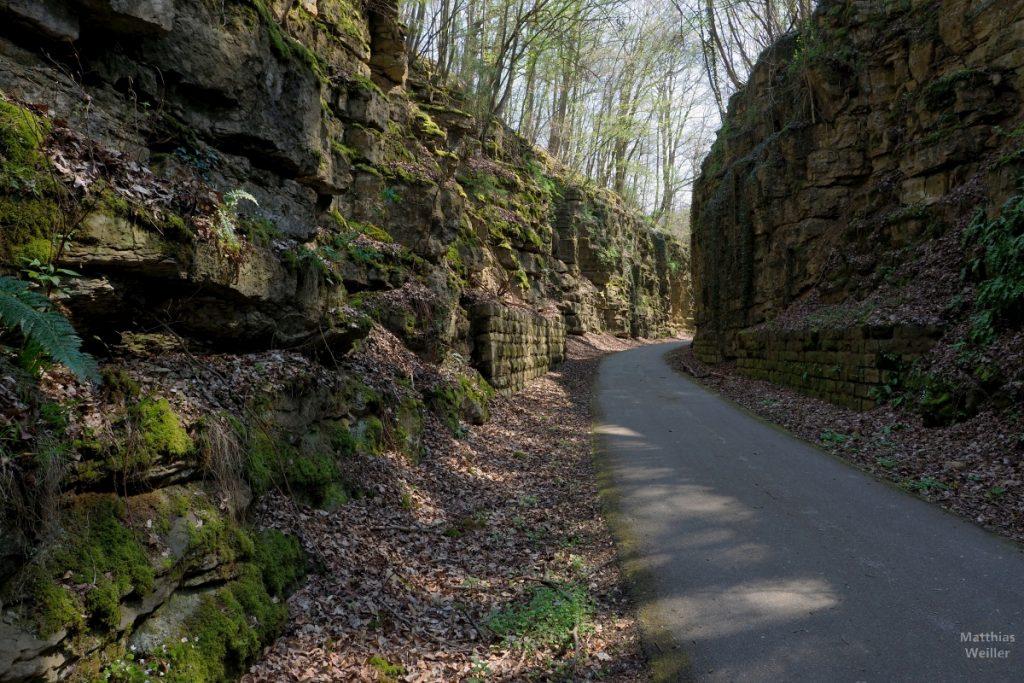 Bahntrassenradweg Consdorf zwischen Felswänden
