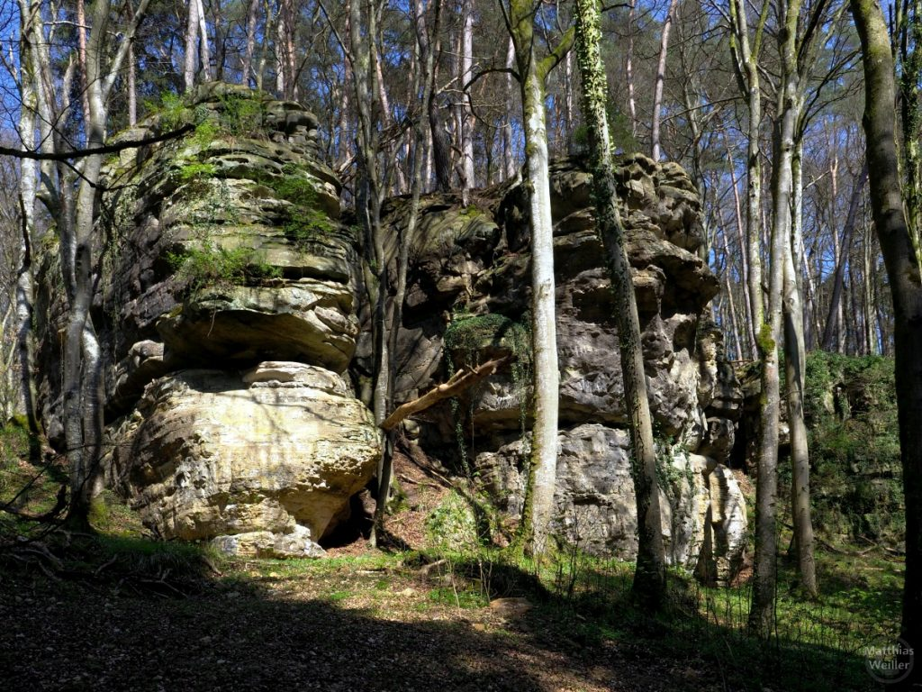 Doppelfelsturm im Wald, Müllerthal
