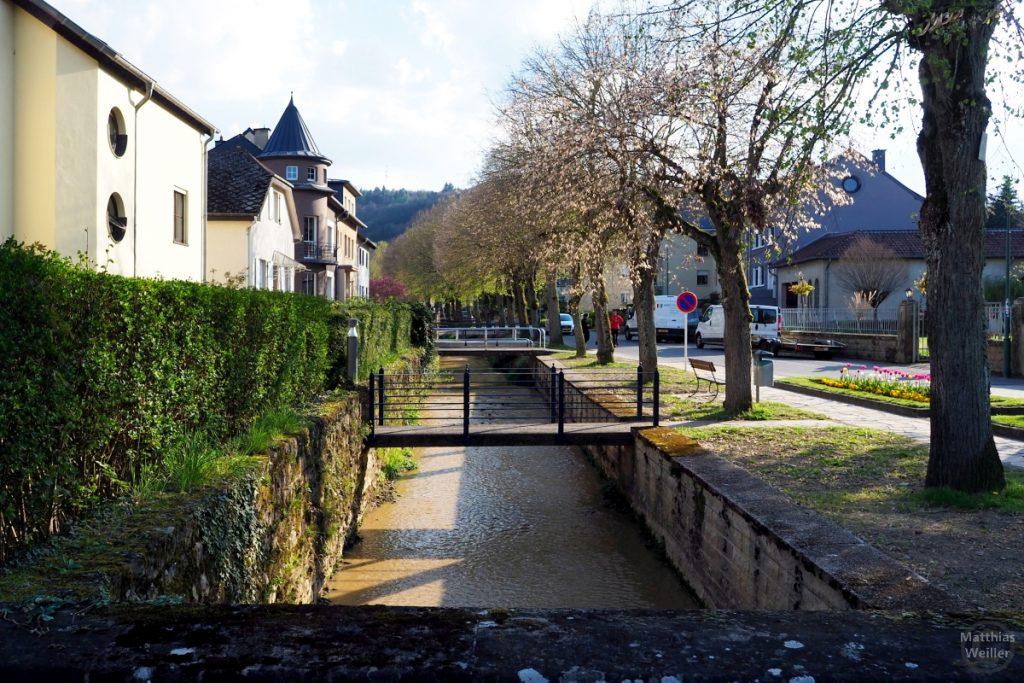 Villenstraße in Echternach mit Blütenallee, Bachgraben und Stegbrücken