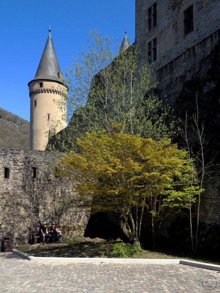 Rundturm mitgelben Blütenbaum, Burg Vianden