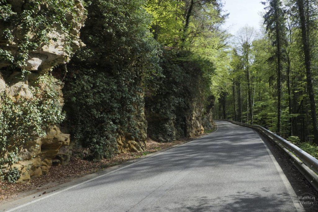 Fels und Buchenwald an Straße bei Larochette