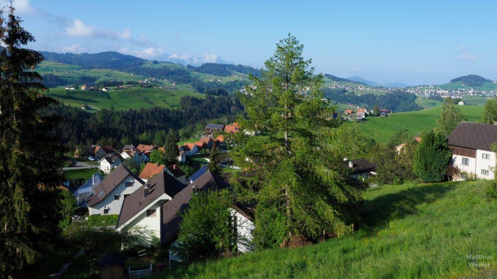 Panorama von Rehetobel ins Appenzellerland mit Trogen und Speicher