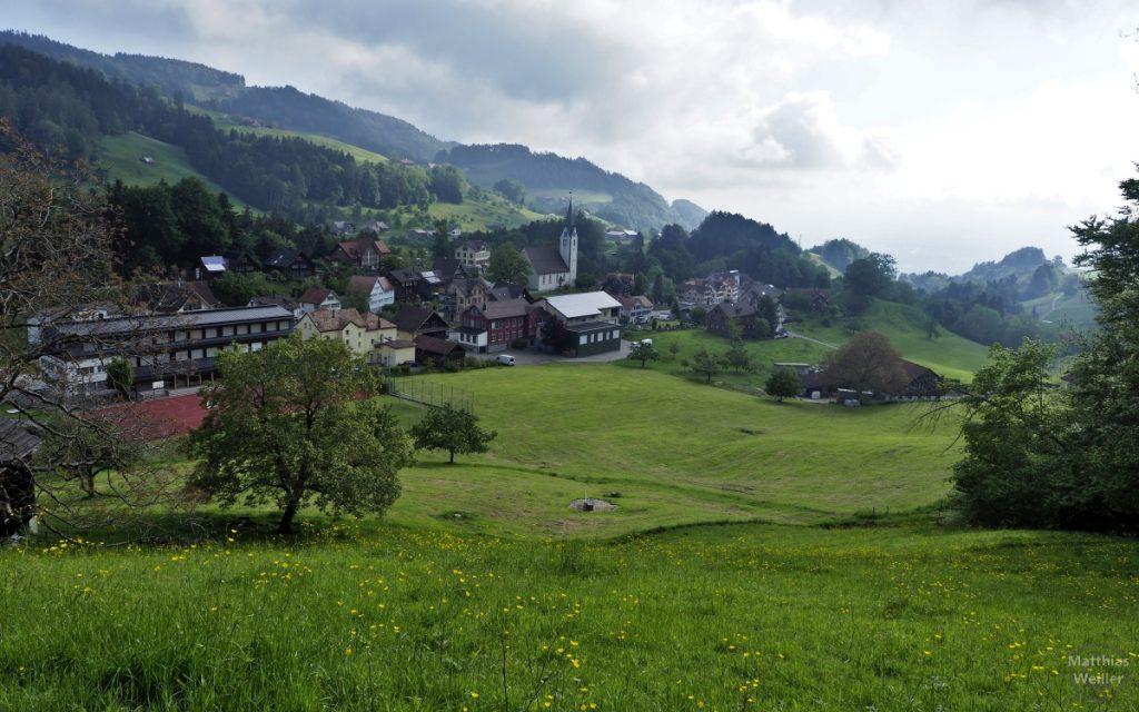 Panorama auf Reute im Appenzellerland
