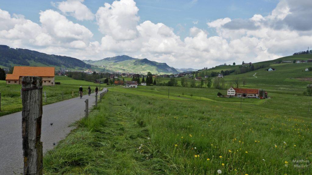 Panorama Radroute runter nach Appenzell, grüne Berglandschaft mit Höfen