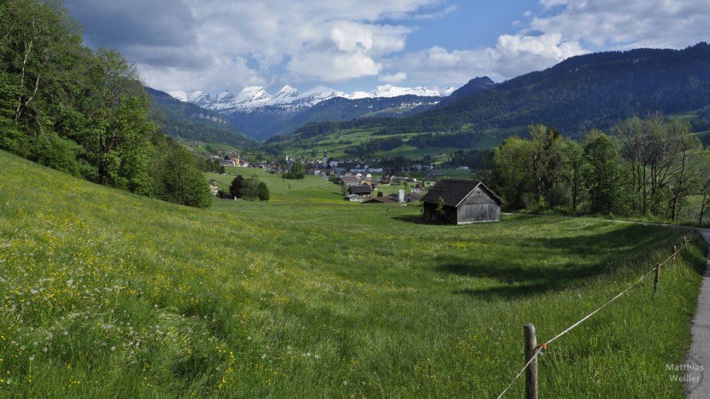 Blick auf Churfirsten-Kette, Toggenburg, Oberes Thur-Tal