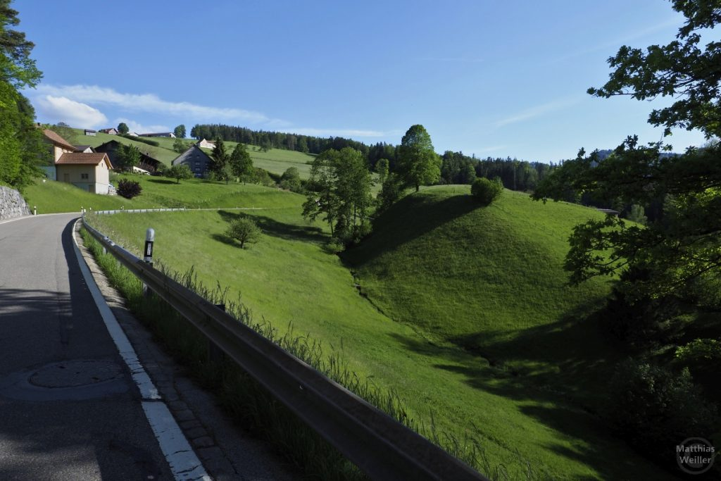 Grün geschwunge Bergwiesen mit Berghäusern Richtung Krinau