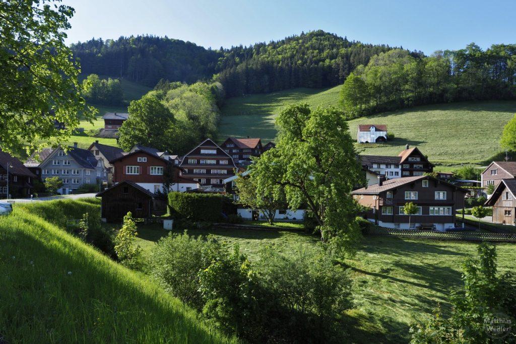 Kulisse Krinau mit dunkelholzigen Häusern in grüner Berglandschaft