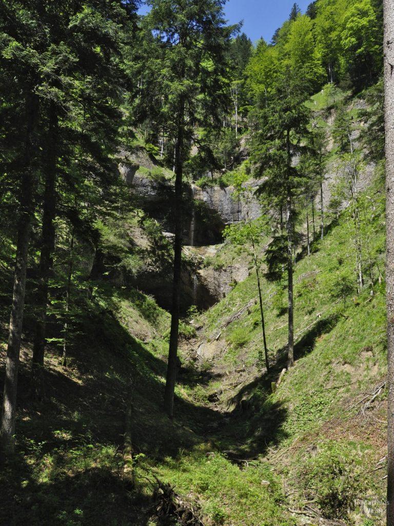 Kaskadenwand mit lichten Baumbestand und mehreren Mergelkanten