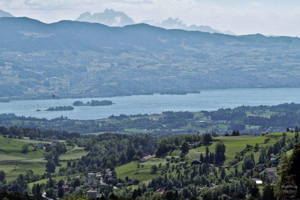 stilisiertes Bild mit Panorama auf Zürichsee