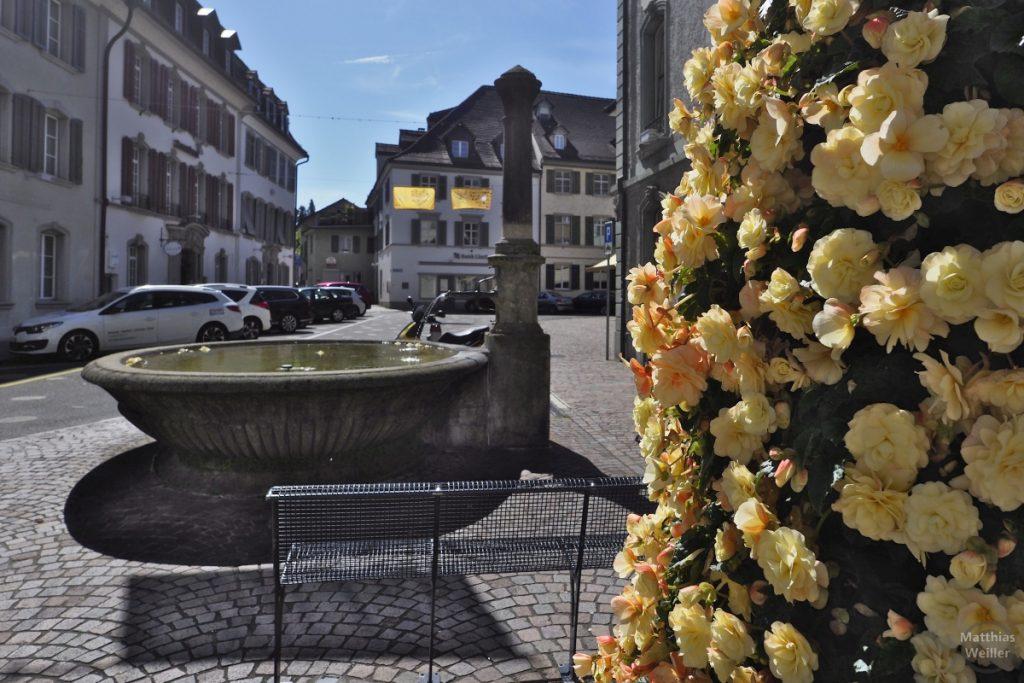 Brunnen in Fraunefeld vor Platz und mit gelbem Blumenschmuck im Vordergrund