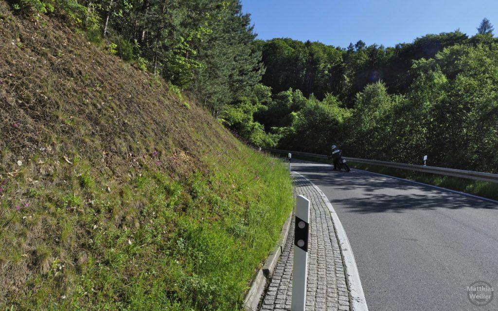 Straßekurve Schiner Berg mit Motorradfahrer in Schräglage