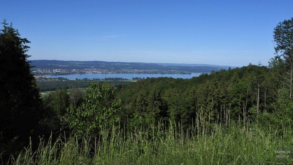 Panoramablick auf Zeller See vom Schiner Berg