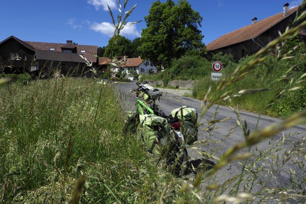 Grünes Velo durch Grasbüschel betrachte mit Dorf Neschwil im Hintergrund