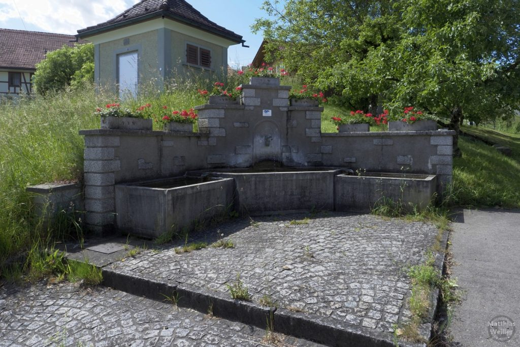Eckbrunnen mit Geranientöpfen in Neschwil