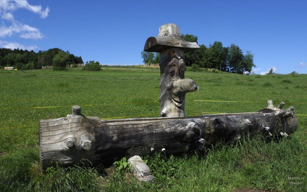 Baumstammbrunnen mit Schnitzkopf, große Nase als Ausguss