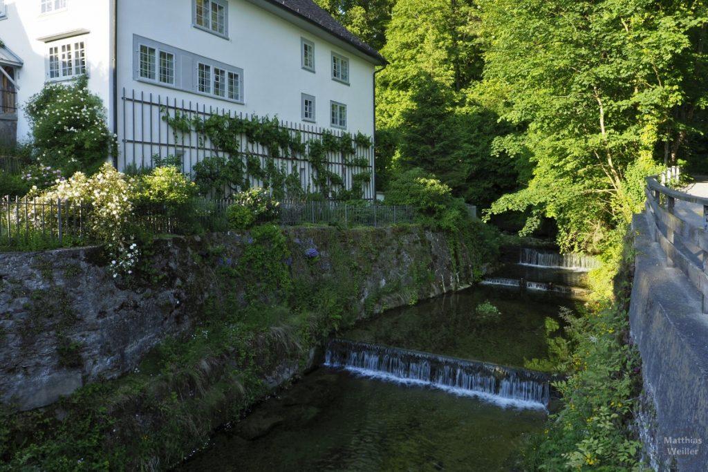 Ehemalige Mühle am Küsnachter Tobel