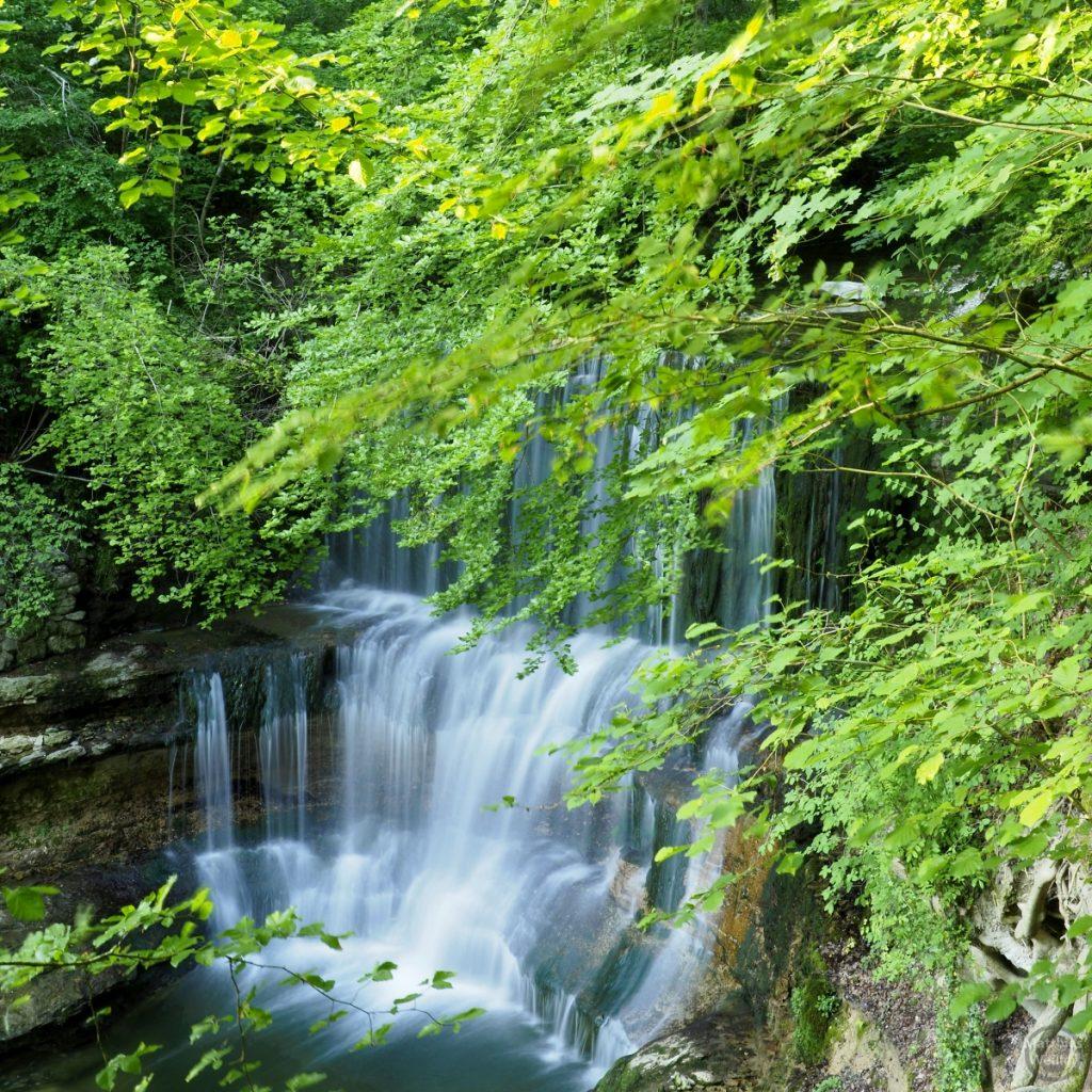 Kaskade in Fließoptik unter grünem Blätterdach, Küsnachter Tobel