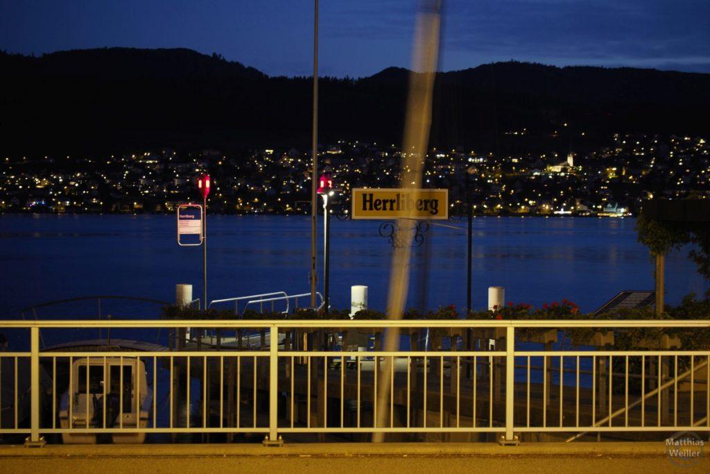 """Balue Stunde mit Blick auf Lichterwald der Gegenuferseite, imn Vordergrund Schiffsanleger mit Schild """"Herrliberg"""""""