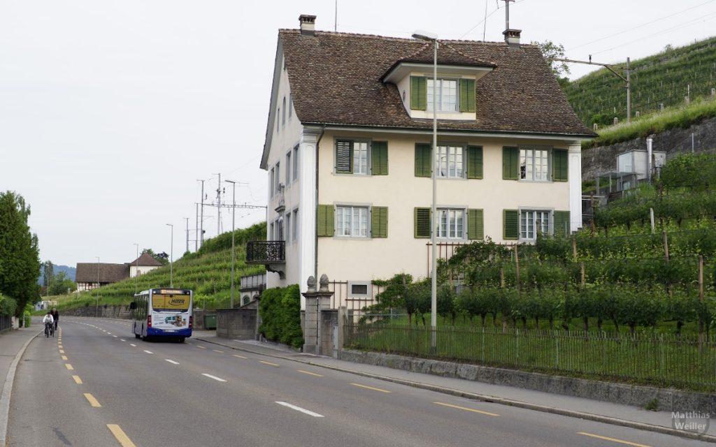 Weinberg mit HAus und grünen Fesnterläden an Straße mit Bus, Radler