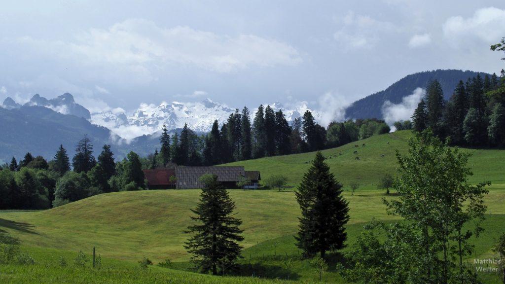 Grüne Almwiesen mit schneebedeckten Bergen im Hintergrund zwischen Kistenpass und Menzingen