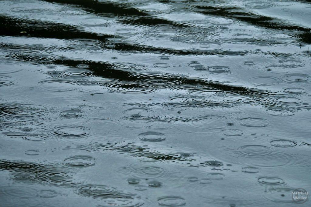 Regentropfenkreise auf Türlersee