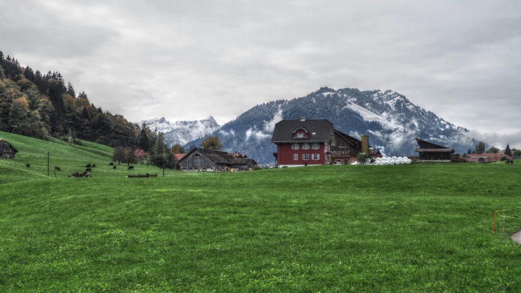 grüen Wiese mit rotem Bauernahus, frisch verschniete Berghügel im Hintergrund