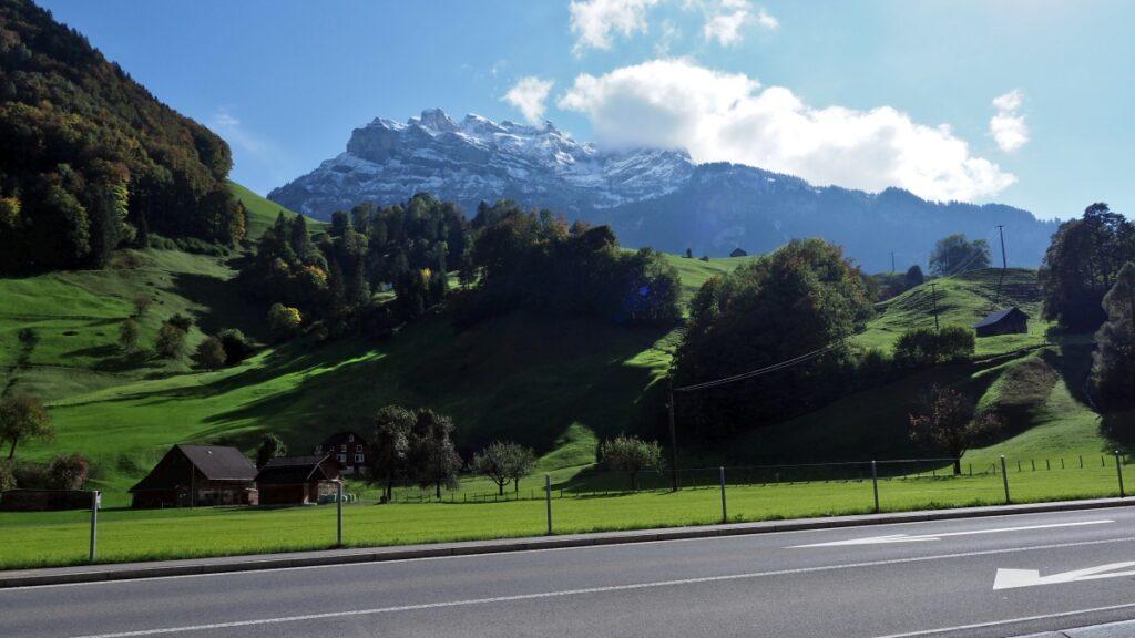 Grüne Bergwiesen mit Schneebergstock im Hintergrund