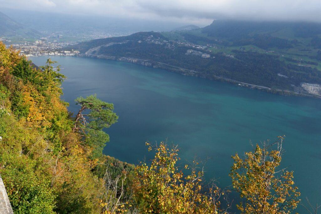 Panorma Vierwaldstätter See von oben, nach Brunnen, mit Herbstbäumen