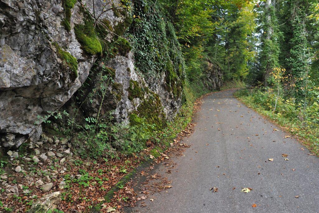 felsige Straßenpassage mit Herbstbäumen